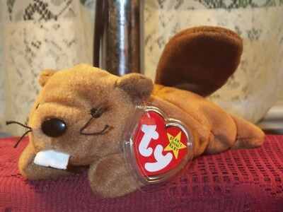 TY Beanie Baby Babies Bucky Beaver Style4016 PVC Carpenter 6-8-1995 retired mint