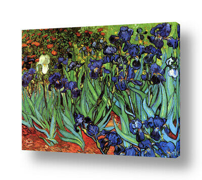 Irises by Vincent Van Gogh | Ready to hang canvas | Wall art HD print artwork
