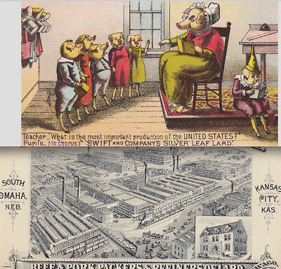 Swift Meat Packers Chicago School Teacher Pig Pork Beef Factory View Trade Card