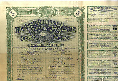 Action Ancienne The Buffelsdoorn Estate & Gold Mining 1899 Mine D'or