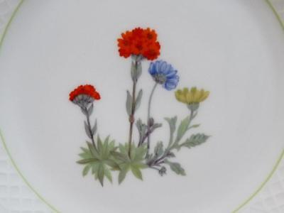 Louis Lourioux Wild Flower Pattern Canape Plate Made in France 6-3/4""