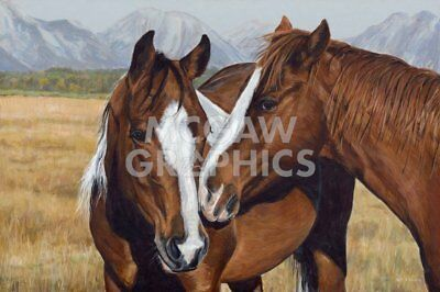 Chasin the Sun by Barry Hart Cowboy Ranch Western Poster 26x38 HORSE ART PRINT