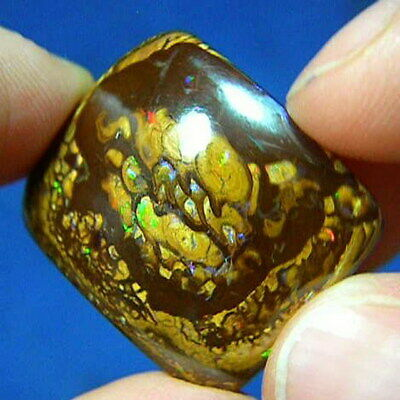Multi-Colored 44ct Natural Australian Solid Yowah Nut Boulder Opal * See Video