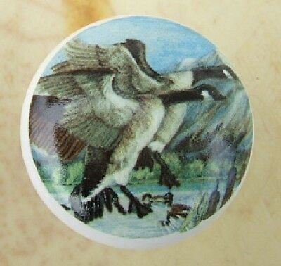 Cabinet Knobs  Canadian Geese Goose bird
