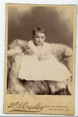 Boys in lace sitting on fur.  Antique Cabinet card photo Forest Grove Oregon