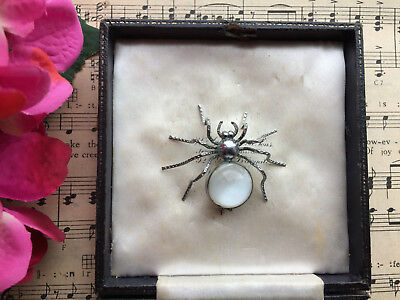 RARE SUPERB ART DECO 30s CHROME JELLY BELLY SPIDER INSECT BROOCH PIN VINTAGE BOX