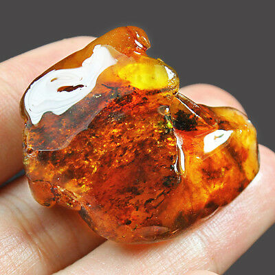 31g Natural Baltic FLASHING FLOWER AMBER Inclusion Collectibl​e MSFY442