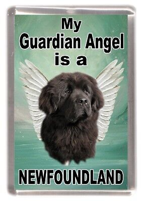 "Newfoundland Dog Fridge Magnet ""My Guardian Angel is a NEWFOUNDLAND"" - Starprint"
