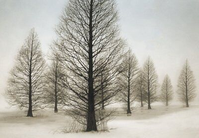 Solitude by David Lorenz Winston Tree Fence Winter Landscape 19x14 CANVAS ART
