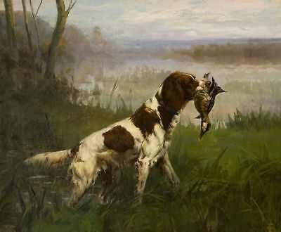 Classic Art Springer Spaniel Hunt Field Ready to Hang Museum Quality on Canvas