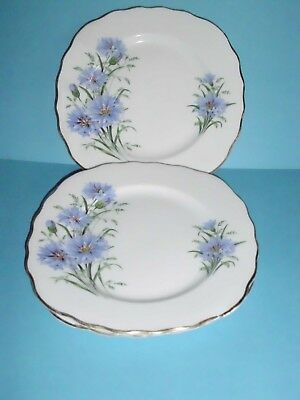 THREE ROYAL VALE CORNFLOWER PATTERN No. 7513 BONE CHINA SIDE PLATES