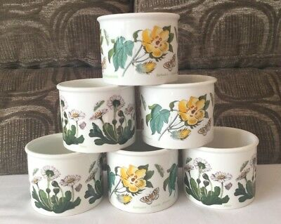 PORTMEIRION BOTANIC GARDEN SET of SIX SMALL CACTUS / FLOWER / CACHE POTS