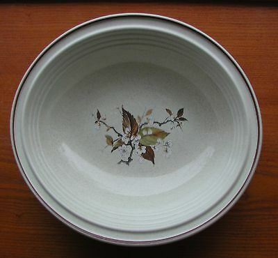 """Royal Doulton Wild Cherry China 10 5/8"""" Large Oval Serving Bowl (S)"""