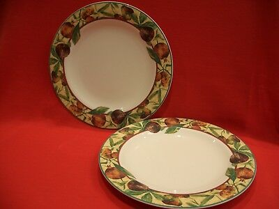 """2 X Royal Doulton Everyday ~~  Augustine   ~~  Tc1196  10 5/8"""" Dinner Plate"""