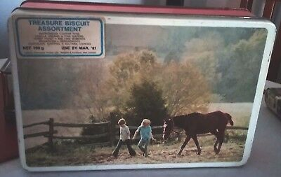 Horsey BISCUIT TIN retro