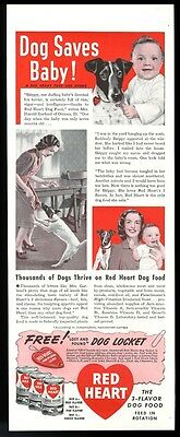 1940 Jack Russell Terrier 3 photo Red Heart Dog Food vintage print ad