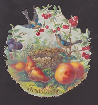 Victorian Die Cut Scrap Fruit And Birds