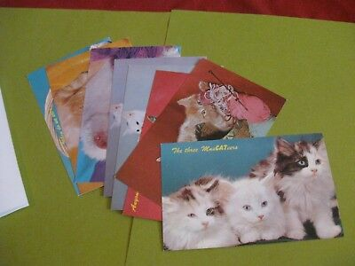 "lot of 8 vintage Dexter Press cat postcards 3.5"" x 5.5"" *unused*"