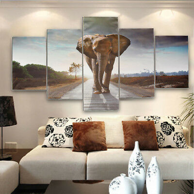 5pcs Large Abstract Elephant Canvas Print Art Picture Home Wall Decor Unframed