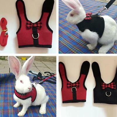 Small Animal Harness Guinea Pig Forret Hamster Rabbit Squirrel Vest Leash Lead G