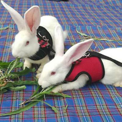 Animal Harness Guinea Pig Forret Hamster Rabbit Squirrel Vest Clothes Lead BS