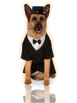 Big Dogs Dapper Dog Tuxedo With Bow Tie And Hat Pet Costume