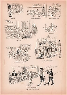 Fancy Dog Home, Hotel, Taylor , Spa, Waiters, Beauty Shop, Antique Print 1890