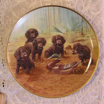 Team Practice 1991 Field Spaniel Puppy Limited Edition Plate James Killen F3495