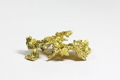Natural Crystalline Gold Formation Specimen Placer Gold High Karat 9.1 grams