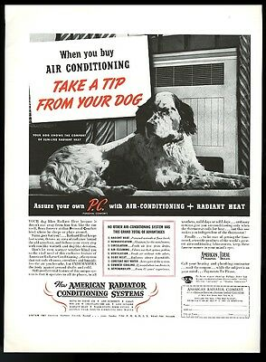1937 English Setter photo American Radiator air conditioning vintage print ad