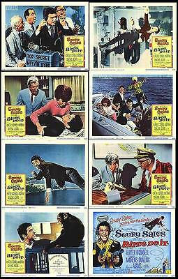 BIRDS DO IT orig lobby card set SOUPY SALES/BEVERLY ADAMS 11x14 movie posters