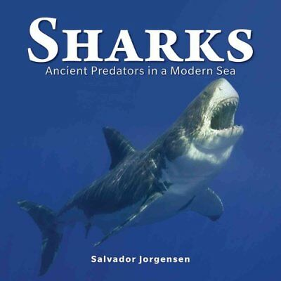 Sharks: Ancient Predators in a Modern Sea by Salvador Jorgensen (Hardback, 2013)