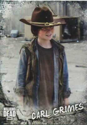 Walking Dead Road To Alexandria Character Chase Card C-3 Carl Grimes