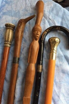 A Beautiful Job Lot of 5 Various Walking Sticks Canes 99p Start No Reserve