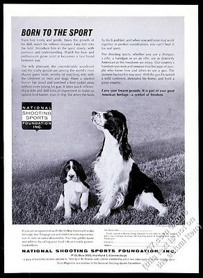 1962 English Setter and puppy photo National Shooting Sports Foundation print ad