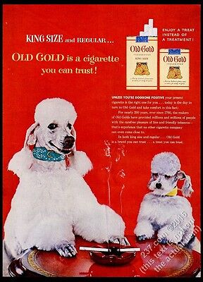 1954 smoking poodle dogs photo Old Gold cigarettes vintage print ad