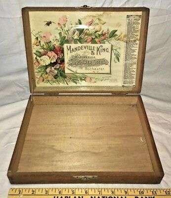 Antique Mandeville King 1895 Flower Seed Box Rochester Ny Country Store Display