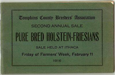 Holstein Friesian Cow Tompkins County Ithaca NY Breeder 1916 Vintage Farmer Week