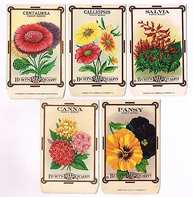 5 Diff Vintage Seed Packet Lot C1910 Flowers Garden Lithograph General Store