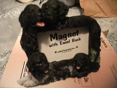 Newfoundland Magnet With Easel Back Picture Frame Puppy Dog Collectible!