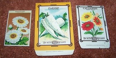 "3 Vintage Seed Packets Burt""s Calliopsis Parsnips & French Chrysanthemum NOS"