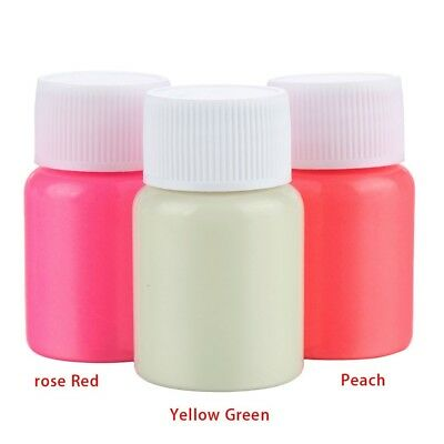25g/Bottle Graffiti Party DIY Glow in the Dark 13 Colors Acrylic Luminous Paint