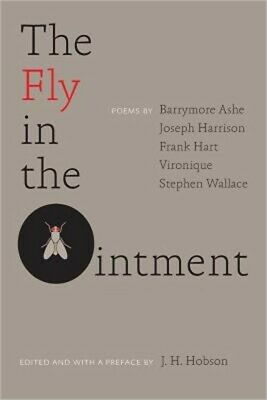 The Fly in the Ointment (Paperback or Softback)