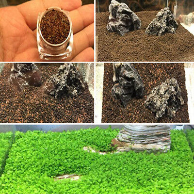 Aquarium Fish Tank Plant Seed Aquatic Water Grass Decor Green Carpet Foreground