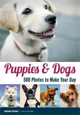 Dogs: 500 Pooch Portraits to Brighten Your Day (Paperback or Softback)