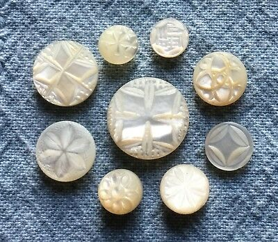 9 Antique Vtg Small MOP Button - White Carved Self Shank - Pearl Shell - Old Lot