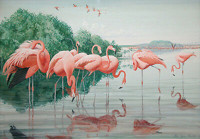 Vintage Art Painting Print On Canvas Flamingos Tropical Chic! Museum Quality