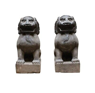 Chinese Small Pair Distressed Black Gray Stone Fengshui Foo Dogs Statues cs3885