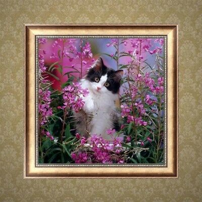 DIY 5D Diamond Painting Flower Cute Cat Embroidery Cross Stitch Kit Home Decor