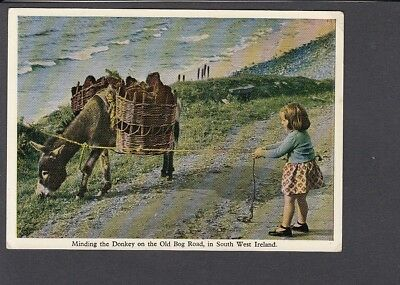 Ireland - South West, Old Bog Road, Girl minding the Donkey - Continental size